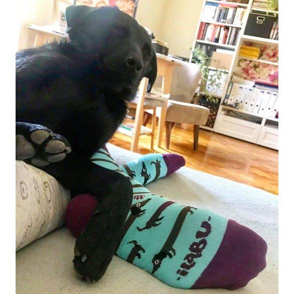 Tacskó csíkos férfi zokni